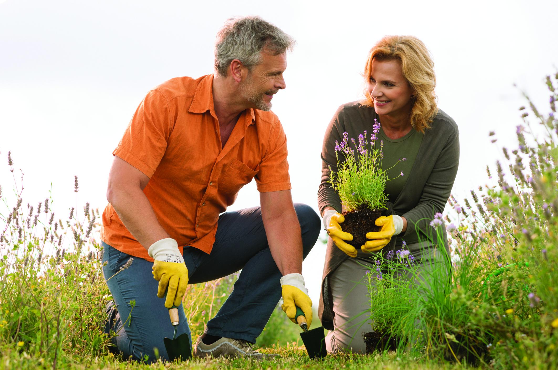Mature Couple Gardening